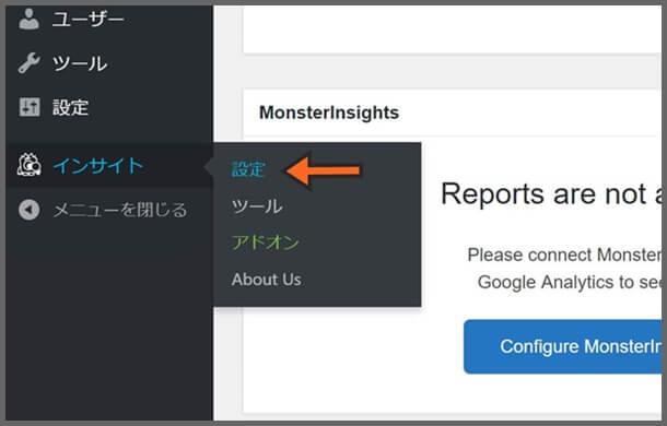 MonsterInsights_設定