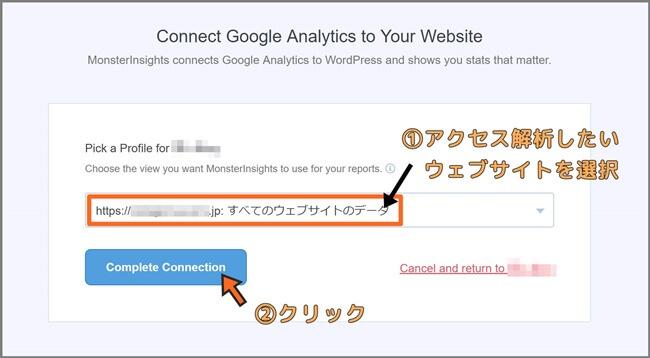 MonsterInsights_Google_Analytics_許可