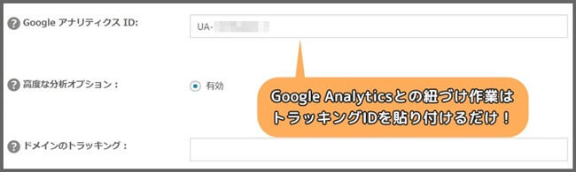 Google_Analytics_連携
