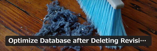 Optimize_Database_after_Deleting_Revisions