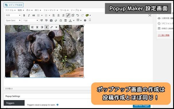 Popup_Maker_設定画面