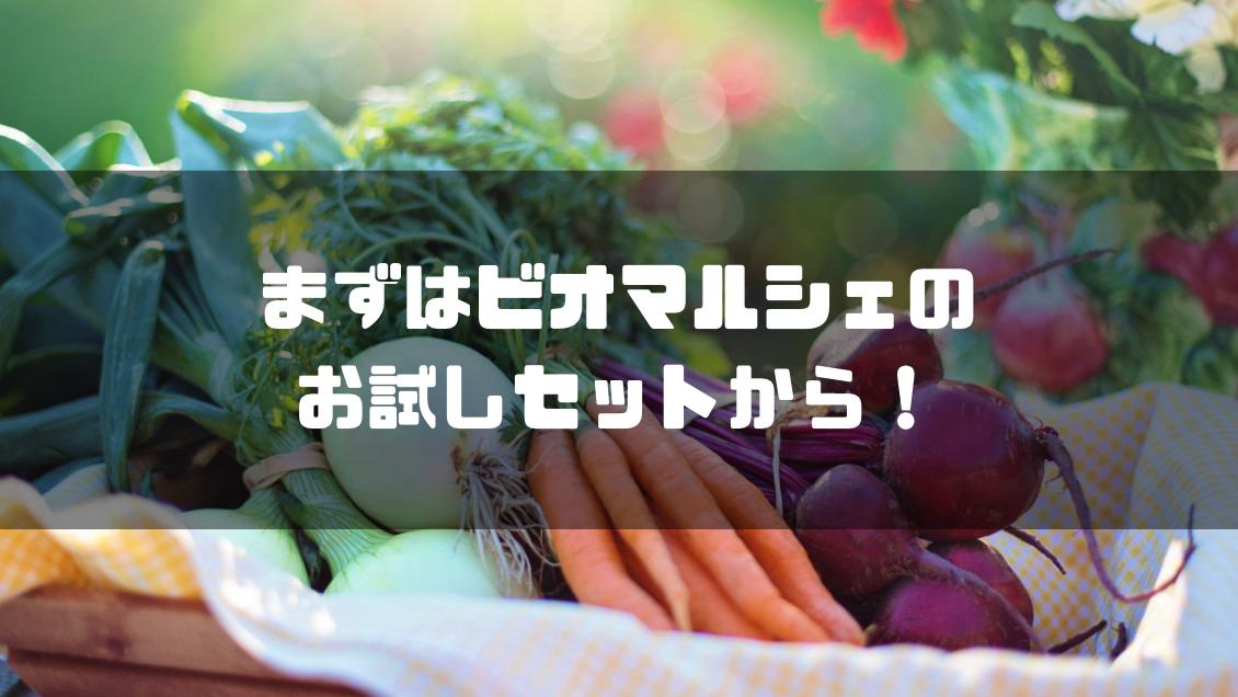 ビオマルシェ_評判_口コミ_お試しセット