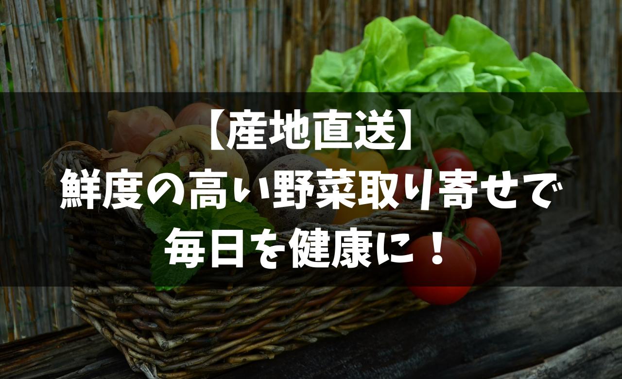 【産地直送】鮮度の高い野菜取り寄せで毎日を健康に!