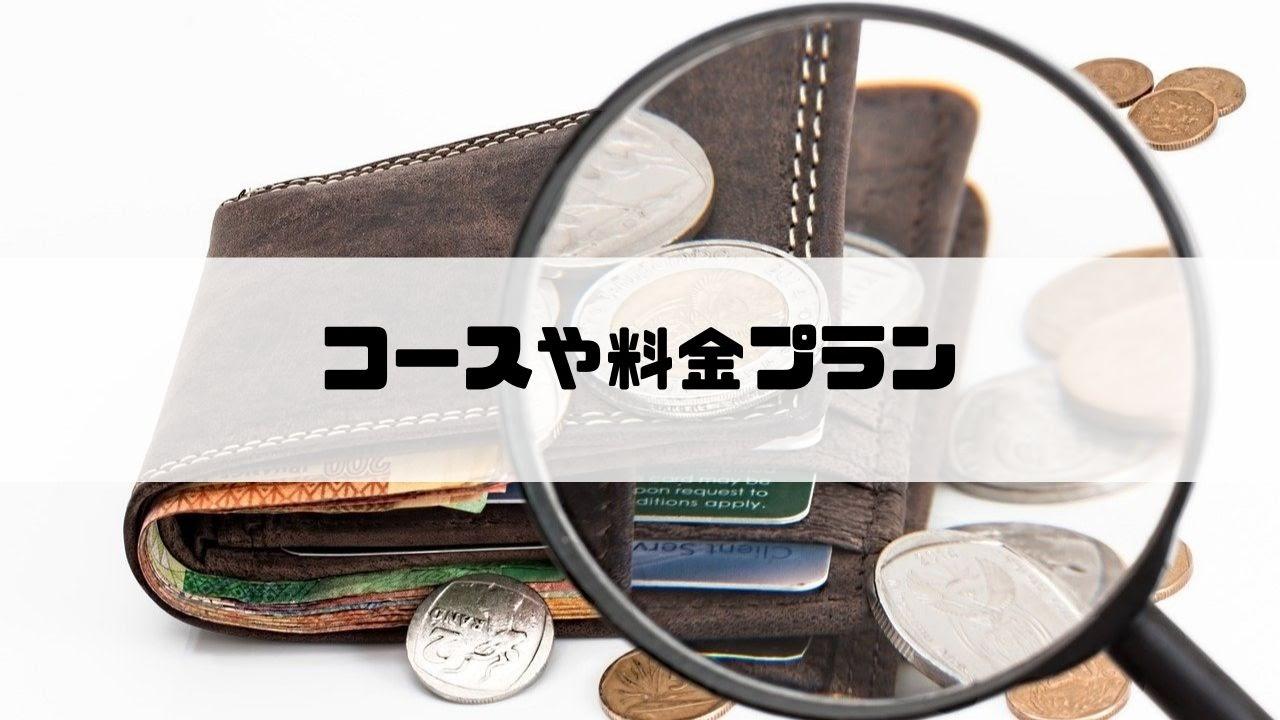 ウェルネス_コースや料金