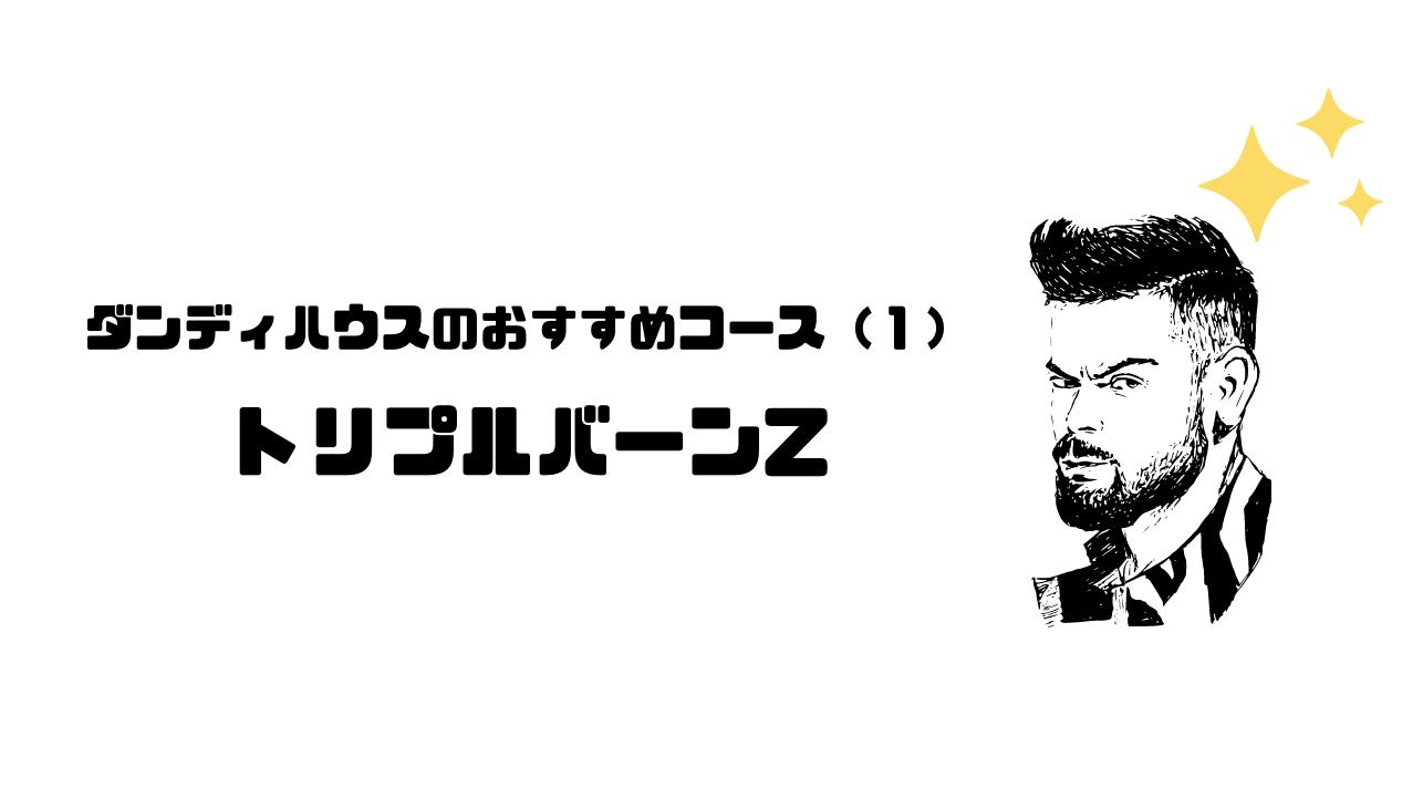 ダンディハウス_口コミ_評判_コース_料金_おすすめ_トリプルバーンZ