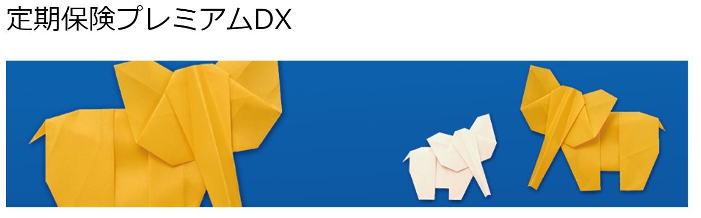 定期保険_プレミアムDX