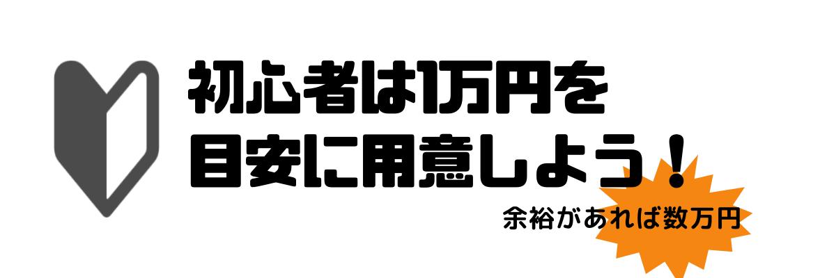 fxいくらから_1万円