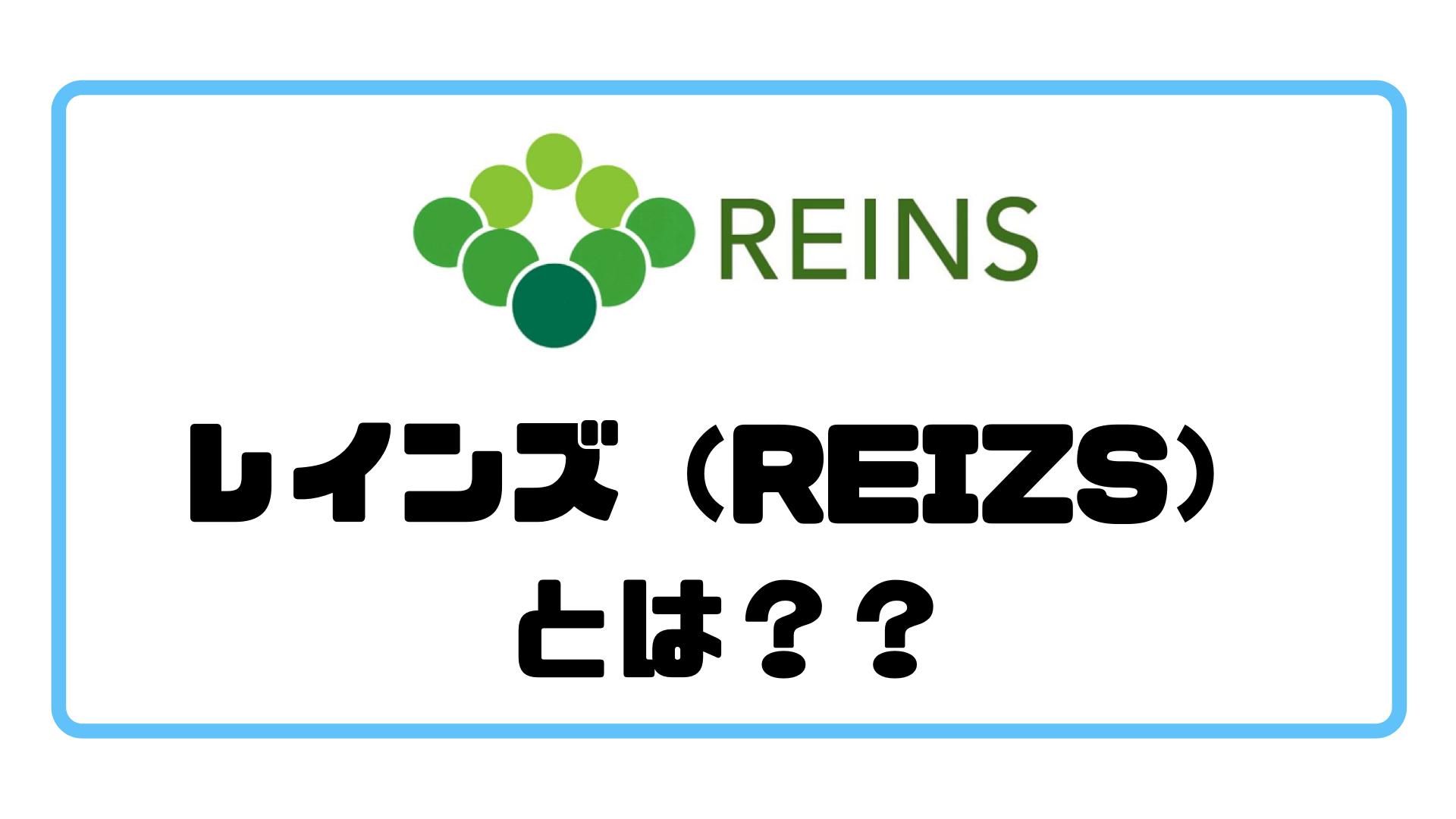 レインズ_とは?