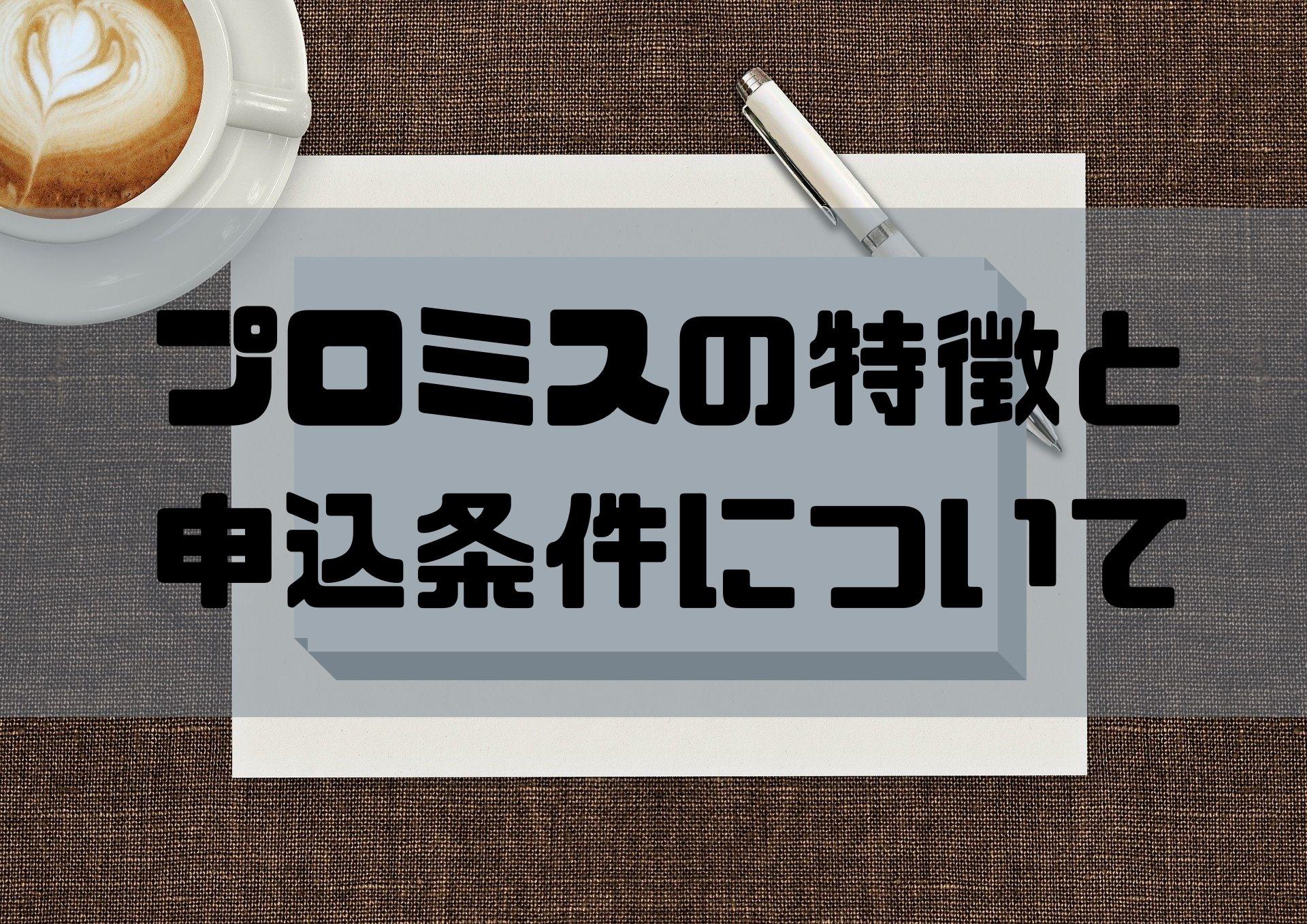 プロミス_特徴