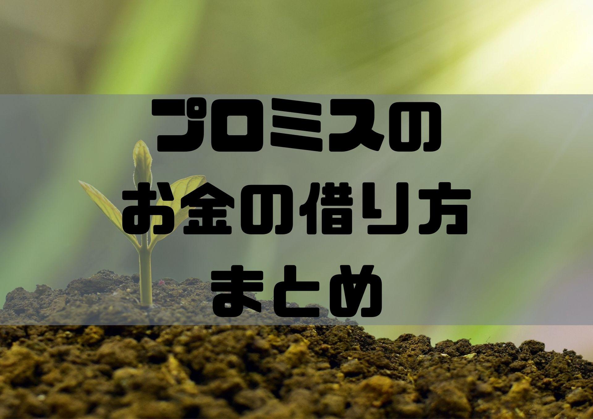 プロミス_まとめ