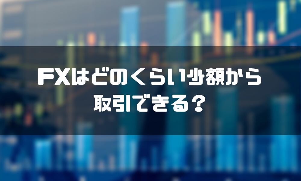 FX_少額_どのくらい
