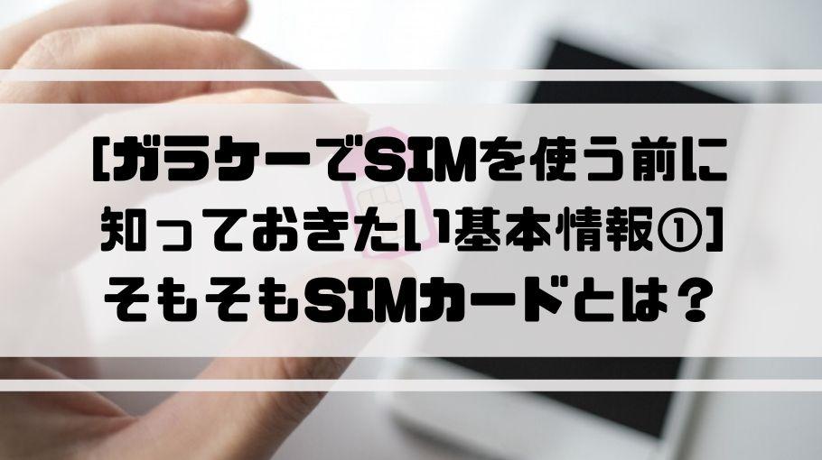ガラケー_sim_とは