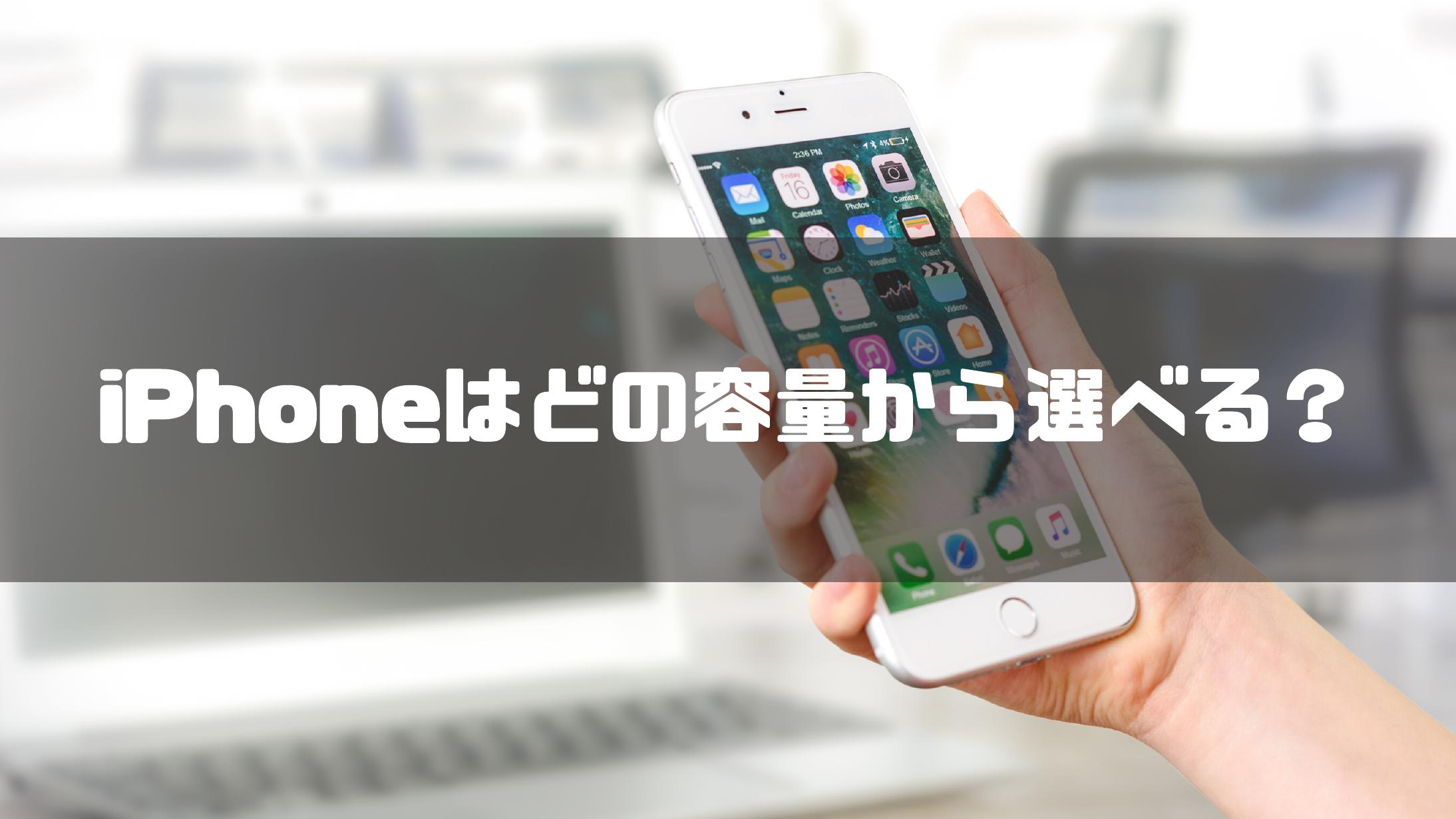 iPhone_デバイス本体のストレージ