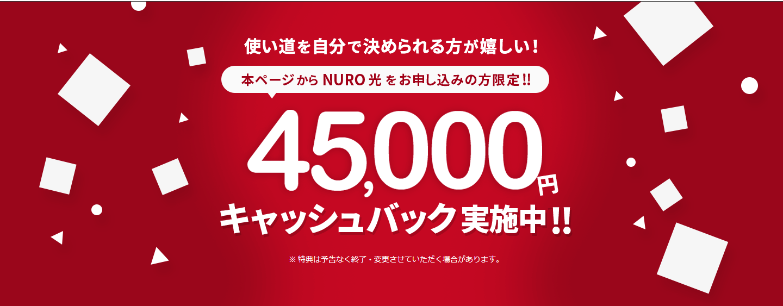 インターネット回線_光回線_おすすめ_NURO光_キャッシュバック