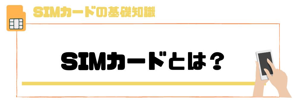 sim_とは