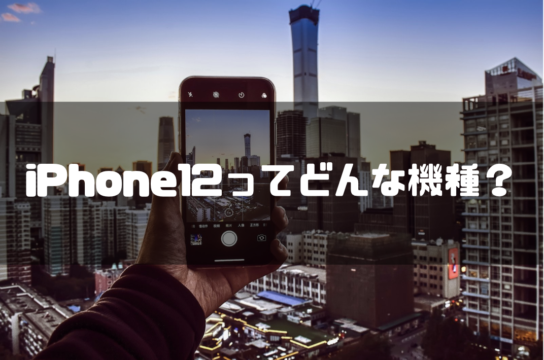 iPhone12_ドコモオンラインショップ_どんな機種
