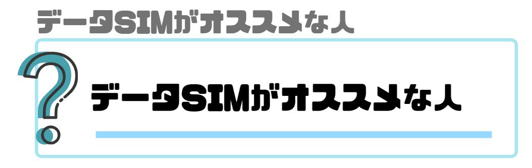データSIM_おすすめ_データSIMがオススメな人