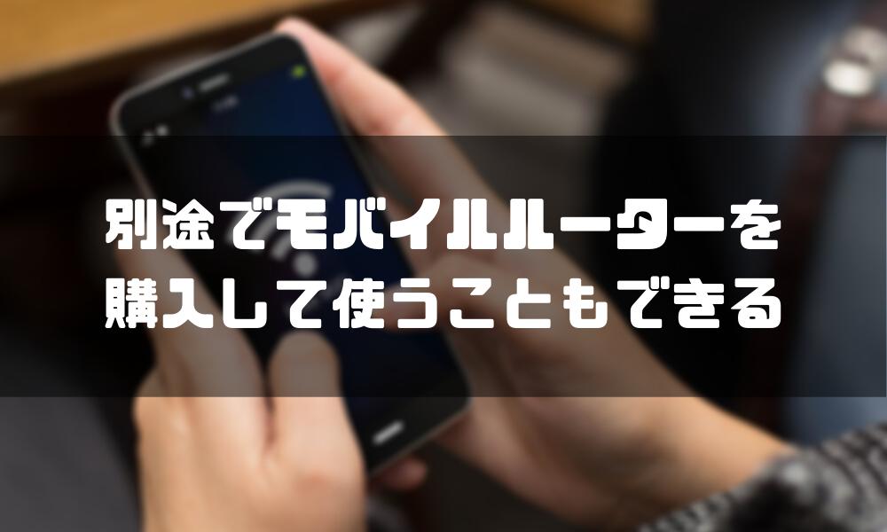 楽天モバイル_WiFi_別途