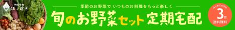 旬のお野菜セット定期宅配