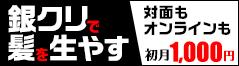 公式サイト(gincli.jp)