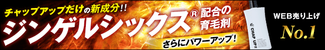 チャップアップ 楽天リサーチ3冠受賞