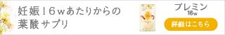 【プレミン16W】