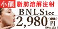 BNLS 安い脂肪溶解注射