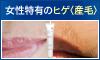 NOISU(ノイス)